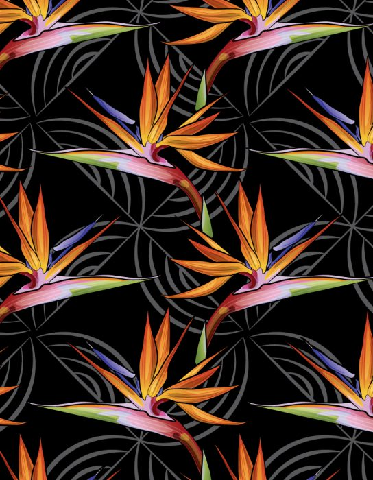 art_asset_bird_of_paradise_pattern