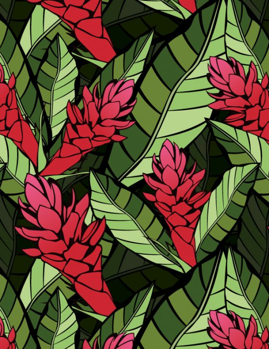 art_asset_red_ginger_pattern